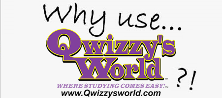 Why Use Qwizzy's World